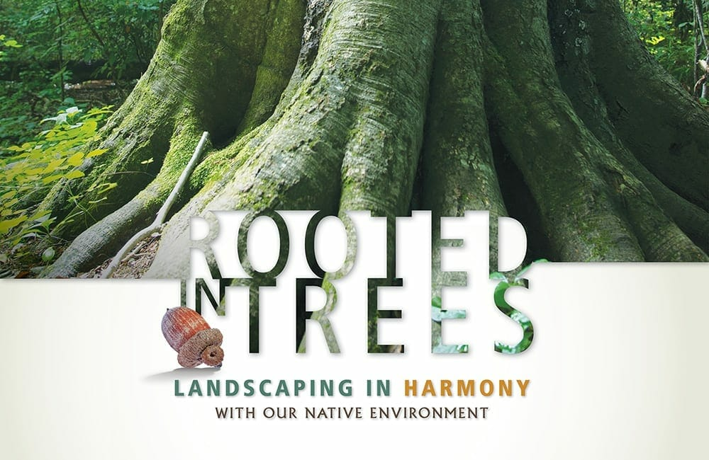 Rooted In Trees: Landscaping in Harmony with the Native Environment