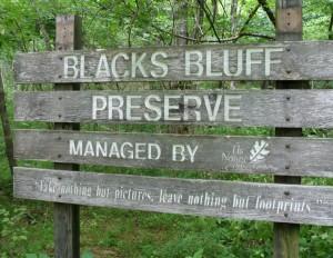 blacks bluff