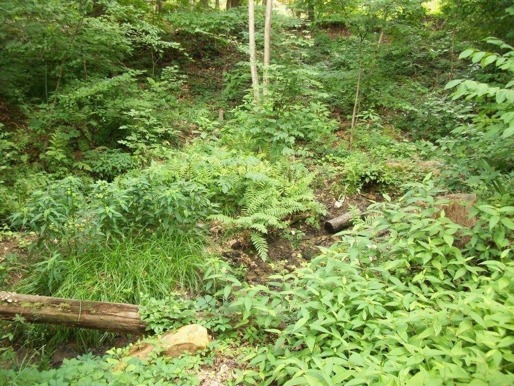 berkeley-lake-slider (6)