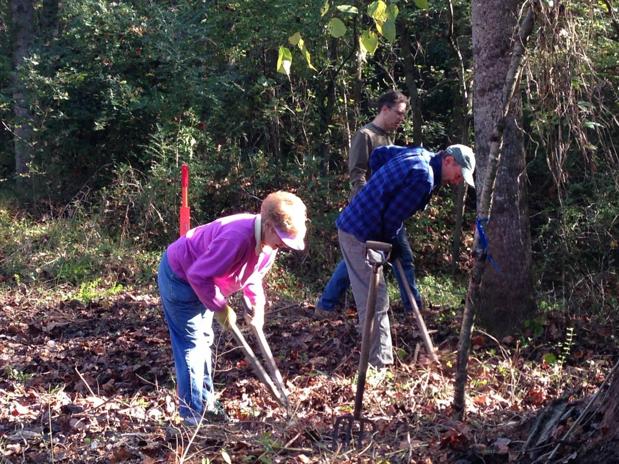 Clearing away the saw briars at Buffalo Creek