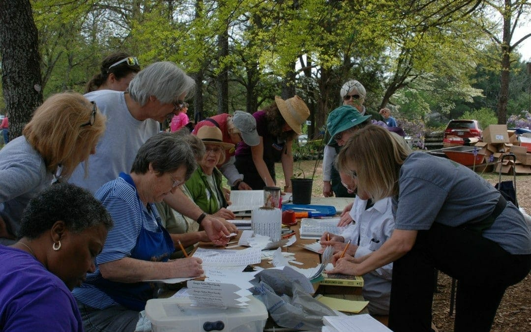 Request for Spring Plant Sale Volunteers