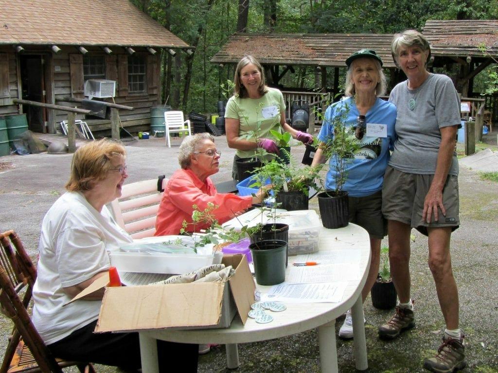 Gnps Fall Native Plant Sale At Stone Mountain Park Gnps