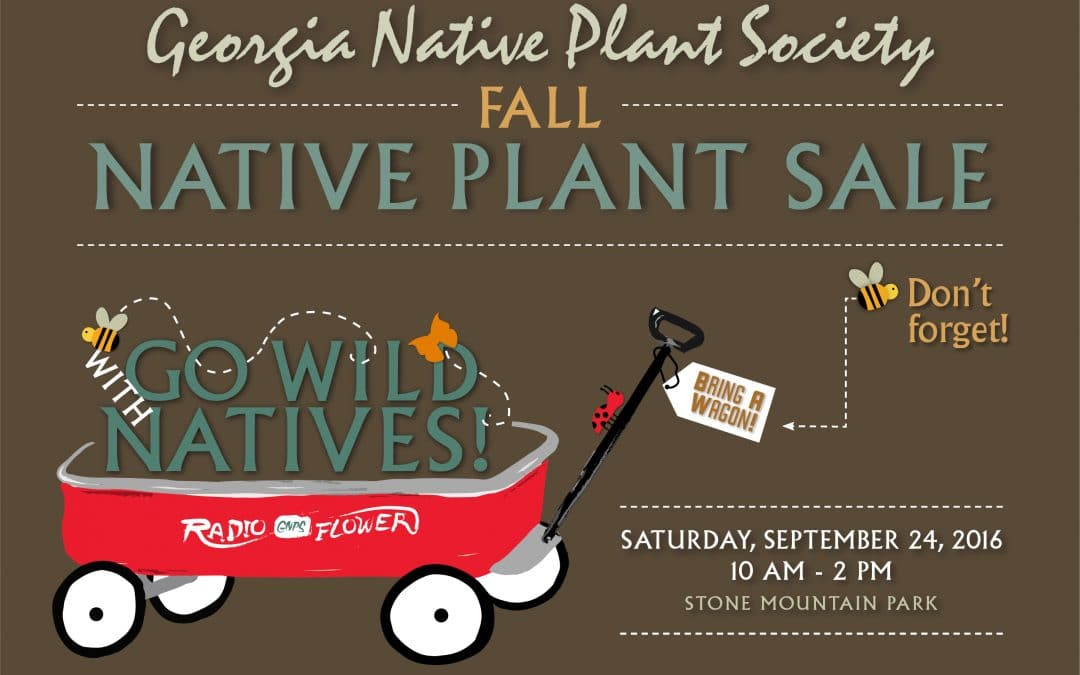 Our Fall Native Plant Sale at Stone Mountain Park